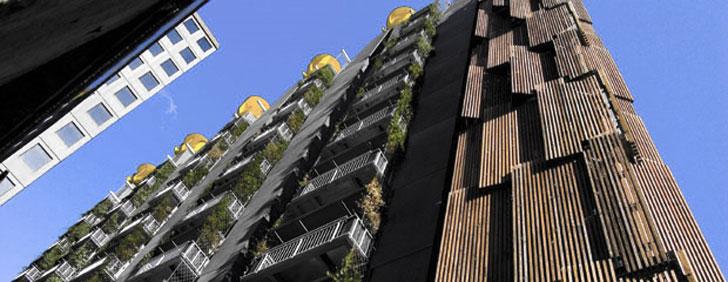 C40 Edificios verdes