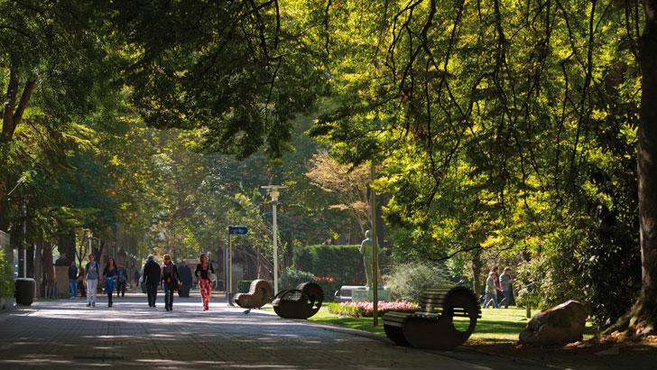 Zonas Verdes Vitoria Smart City