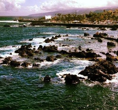 Playa de Canarias, que será el coordinador del proyecto.
