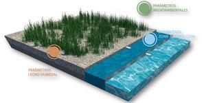 Monitorización y control de humedales para optimizar el proceso de depuración de aguas residuales urbanas en comunidades inteligentes sostenibles
