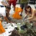 La App para detectar basura marina Marnoba, premiada por Energy Globe
