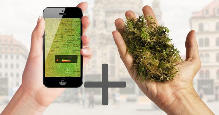 'Árboles urbanos' inteligentes para reducir la contaminación del aire. Tecnología de Internet de las Cosas y musgo