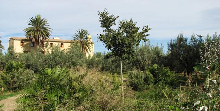 Centro de Educación Ambiental de la Comunidad Valenciana Taller sobre cálculo de huella de carbono para un turismo sostenible