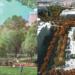 Dos proyectos finalistas para la remodelación de Plaza de España