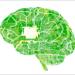 Mejoran en un 90% la eficiencia de gestión de Redes Neuronales Profundas utilizadas en Inteligencia Artificial