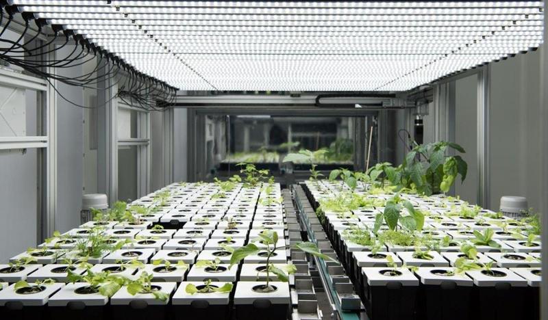 Francia desarrolla un proyecto de agricultura urbana digital que utiliza análisis de datos, Realidad Virtual y mantenimiento predictivo.