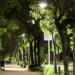 Alcobendas instala telegestión y luminarias LED que le permiten un ahorro energético del 70%