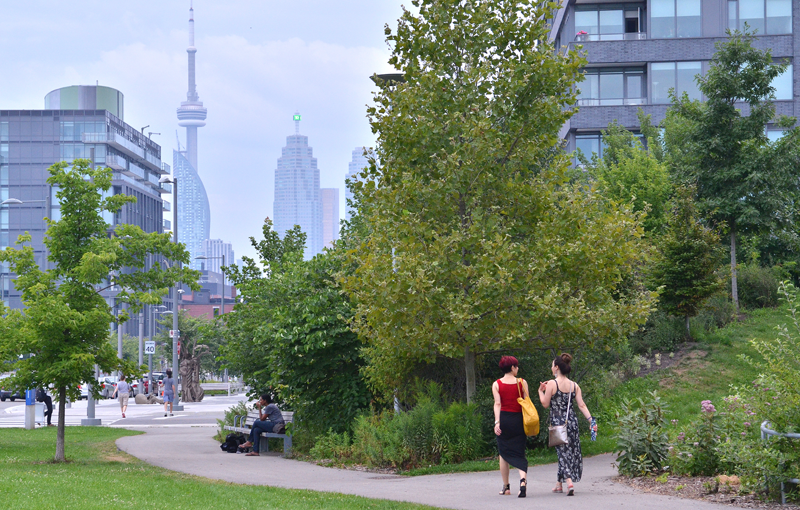 El objetivo de la empresa vinculada a Google y de la empresa pública Waterfront Toronto es contar con el plan maestro aprobado en 2019 y empezar el despliegue de prototipos y proyectos piloto.