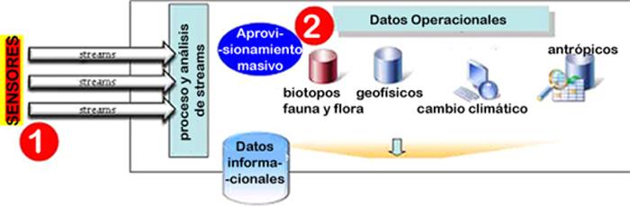 Figura 2. Aprovisionamiento de datos en entornos ecosistémicos complejos.