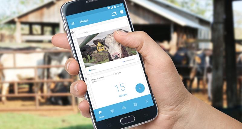 """Aplicación del proyecto """"Producing Right!"""" para mejorar y facilitar el trabajo de ganaderos en Ecuador. Esta idea ha sido la ganadora de la Iniciativa de Innovación Sostenible (IIS) de Telefónica."""