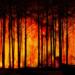 Emergencias de la Generalitat Valenciana aplicará un modelo predictivo de teledetección de incendios forestales