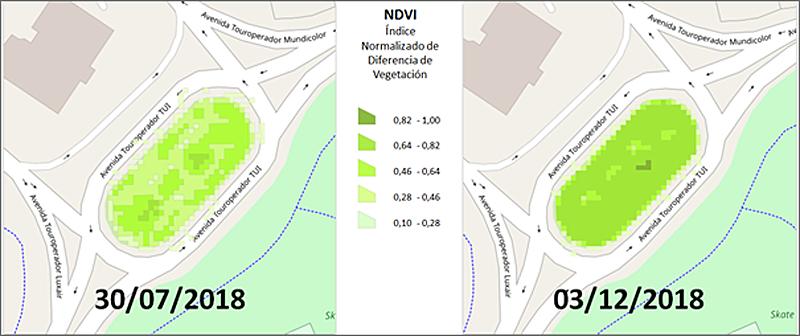 Figura 6. Rotonda Trasera del Ayuntamiento. Comparativa del NDVI inicial y final.