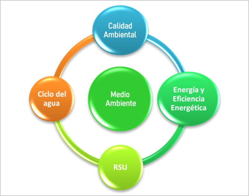 Figura 5. Grupo de Trabajo de medio ambiente y energía.