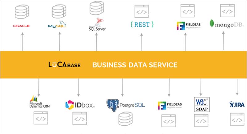 Captura de pantalla LUCA Business Data Service
