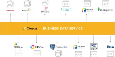 De la información oculta en los datos, a la ayuda eficaz al ciudadano – El poder del business data service