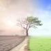El Parlamento Europeo aprueba una resolución que declara la emergencia climática global