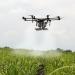 La iniciativa 'Impulso 5G en Andalucía' comienza con un reto para el ámbito de la agricultura