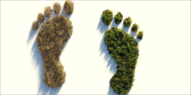 El impacto ambiental de la huella de carbono puede ser personal, de una organización, de un evento o de un producto o servicio.