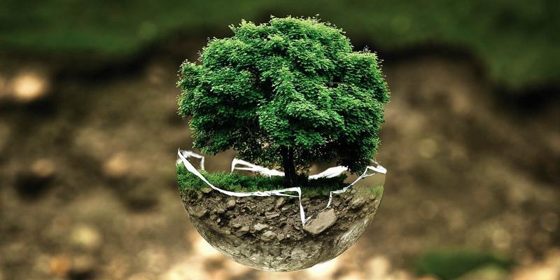 El medio ambiente de las ciudades contempla la calidad del aire, la gestión sostenible de los recursos y las zonas verdes