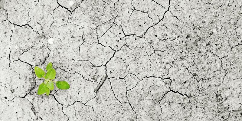 Las ciudades inteligentes se encaminan cada vez más hacia un modelo de ciudad sostenible para combatir el cambio climático.
