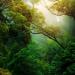 Formación online gratuita para mejorar la sostenibilidad en los municipios rurales
