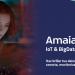 Plataforma IoT & big data Amaia de Wellness TechGroup