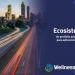 Ecosistema IoT de Wellness TechGroup