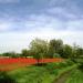 La UE impulsa las comunidades rurales inteligentes a través de proyectos piloto a gran escala