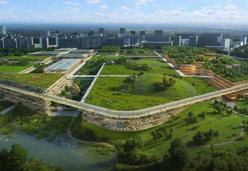 Future City China
