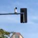 Alicante comienza la instalación de 156 cámaras inteligentes para mejorar la movilidad