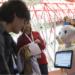 El IV Congreso de Tecnología y Turismo para la Diversidad amplía el llamamiento de comunicaciones