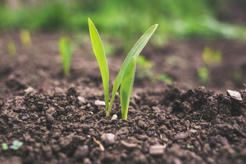 Grupo SUEZ se suma a la iniciativa 'Circulares y Sostenibles 2025' para mejorar la gestión de residuos y subproductos