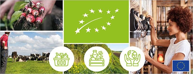 Plan de Acción Rural de la UE